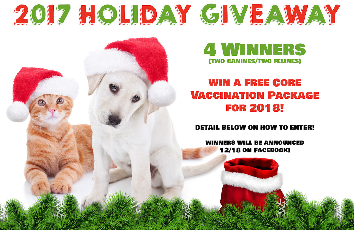2017 Holiday Giveaway! – MainStreet Veterinarians of Stone Mountain