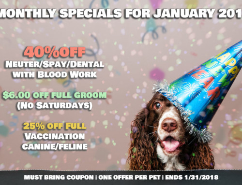 MONTHLY SPECIALS FOR JANUARY 2018