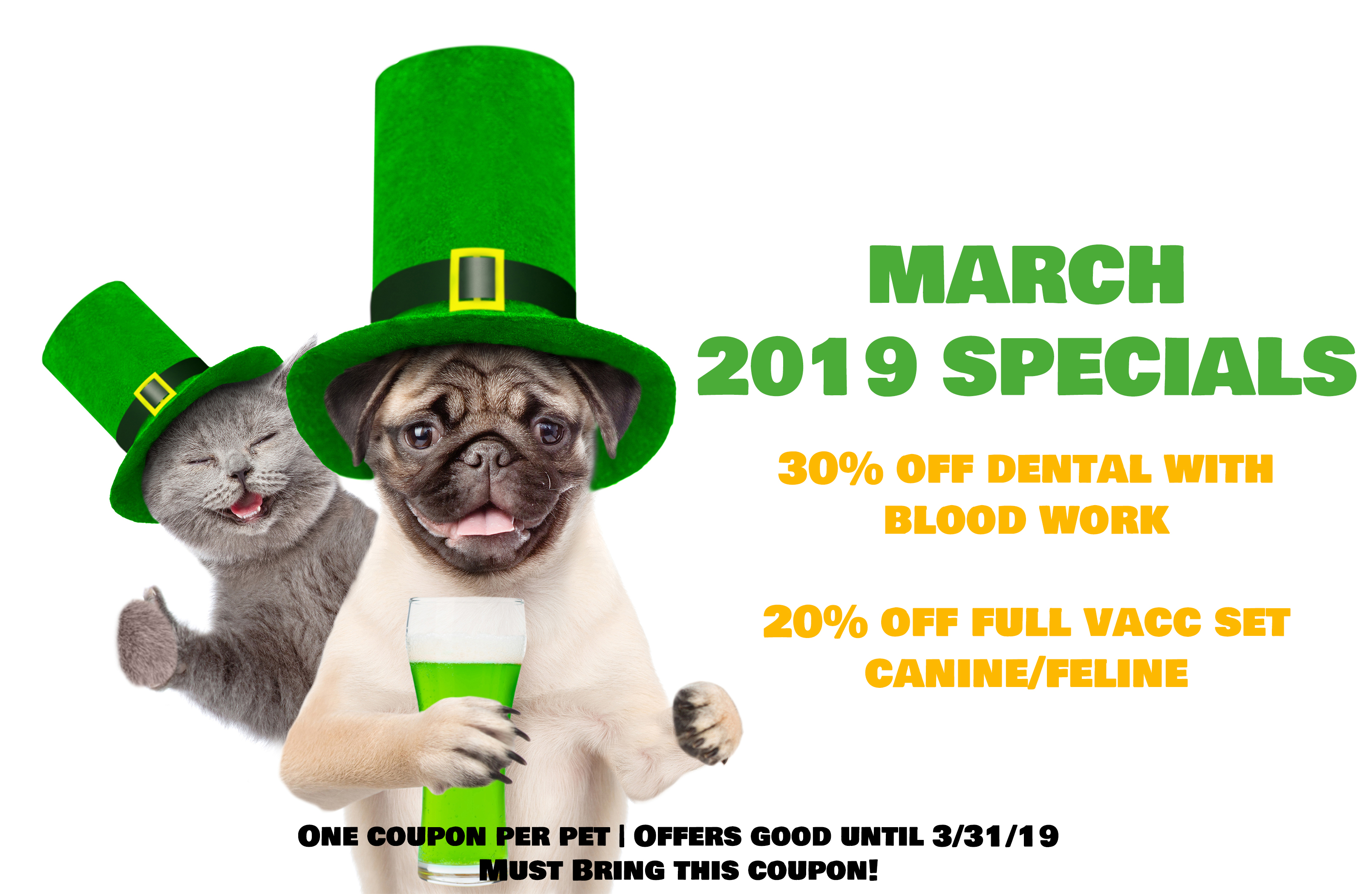 March s Monthly Specials – MainStreet Veterinarians of Stone Mountain 18ca47654